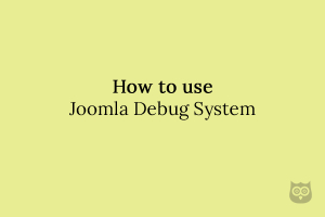 How to use Joomla Debug System