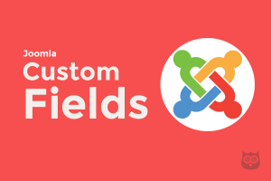 10 Joomla Custom Fields You Need the Most