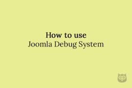 How to use Joomla Debug System