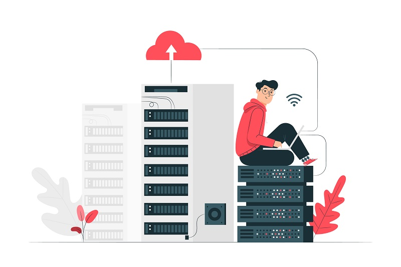 Web Hosting and Domain