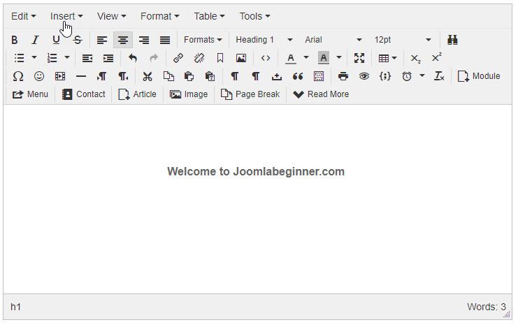 TinyMCE_Content_Editor.jpg