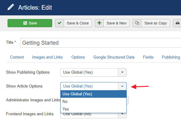 joomla-show-article-options-in-article
